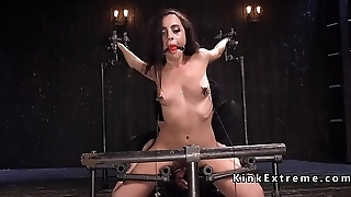 Hairy babe pussy vibed thither device