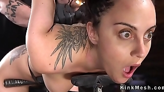 Bent over hairy slave fucked with toy